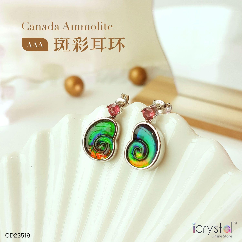 斑彩石螺形耳环